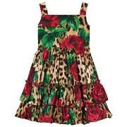 Dolce & Gabbana Leopard and Rose Print Klänning 2 years