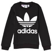 adidas Originals Big Trefoil Logo Tröja Svart 10-11 years (146 cm)