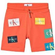 Calvin Klein Jeans Patchwork Shorts Hot  4 years